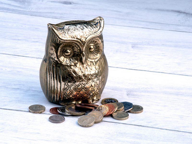 owl-moneybox